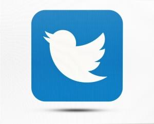 Twitter the twit