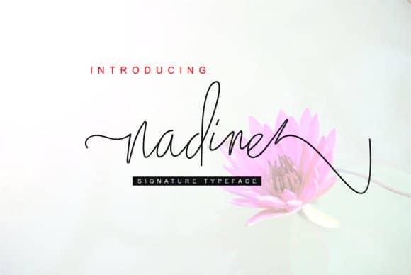 Free Script Font Nadine