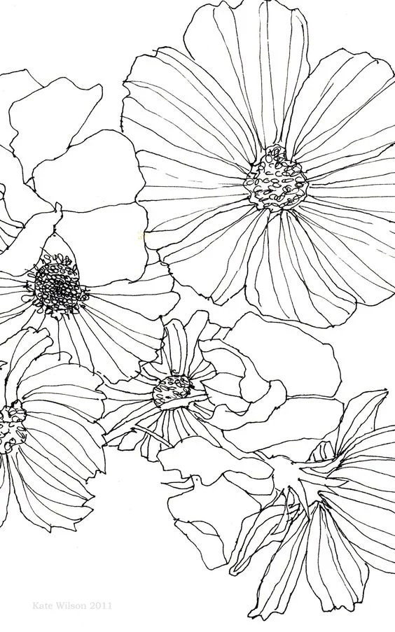 Flower Drawing idea