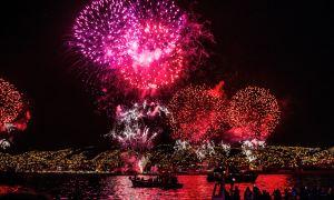 Fireworks - Preparing and Comforting Your Shih Tzu