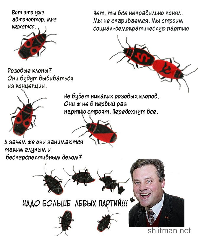 klopi_i_vernik