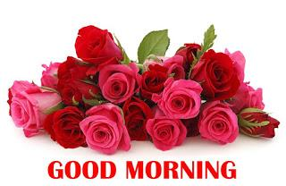 Free Download 151 Hd Good Morning Wallpaper For Whatsapp