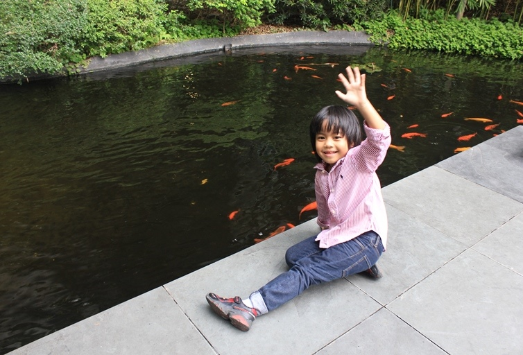 greenbelt fish pond
