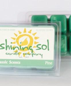Pine - Sol Scent