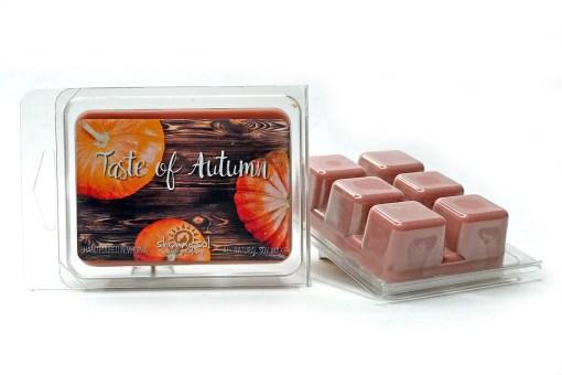 Taste of Autumn - Wax Melt