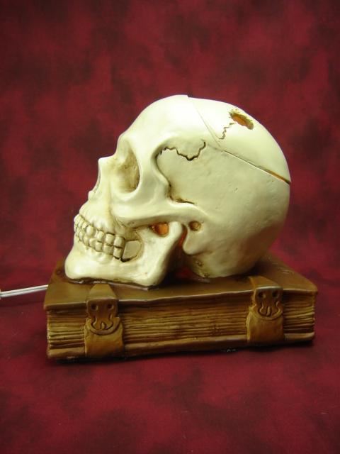 Scholarly Skull Wax Warmer