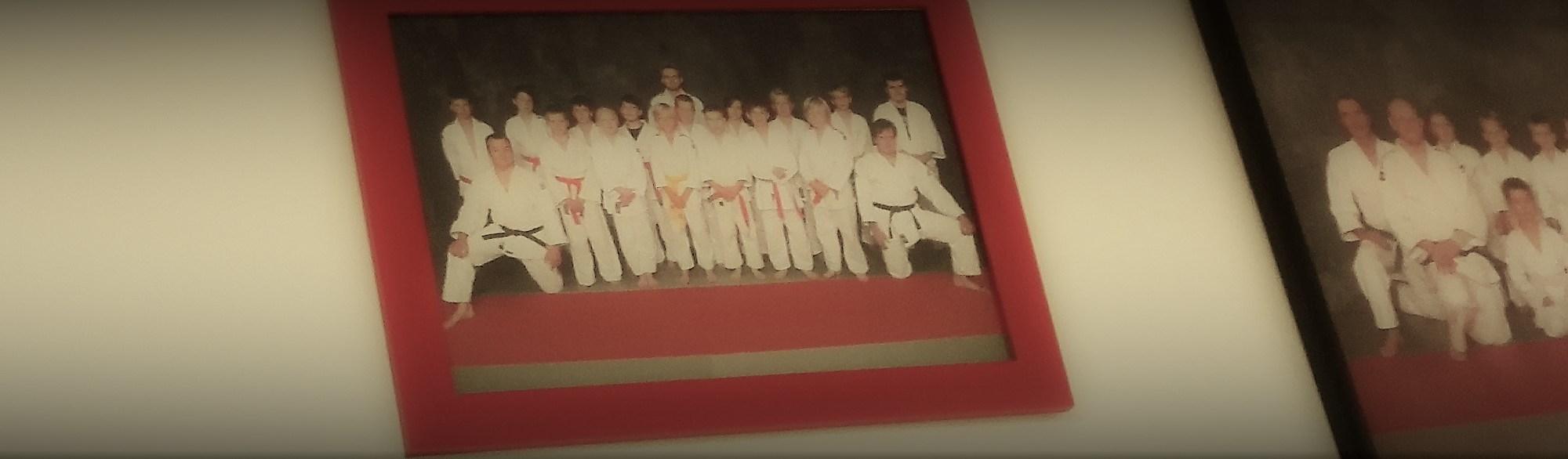 Tauluja Shinrain judoryhmistä.