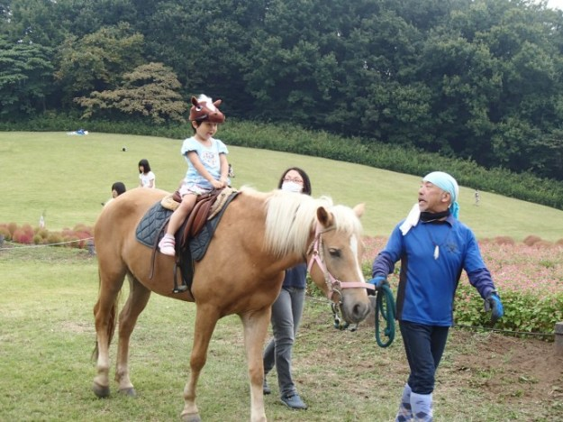 Horse riding shinrin park