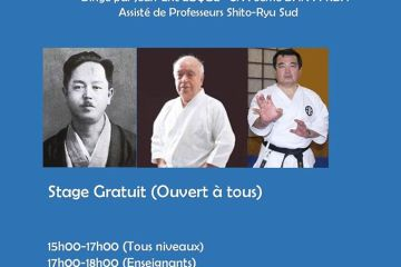 A venir AVRIL Stage KARATE Shito Ryu