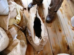 ロブスター種のコーヒー豆の入った袋。珈琲屋 Beans にて。