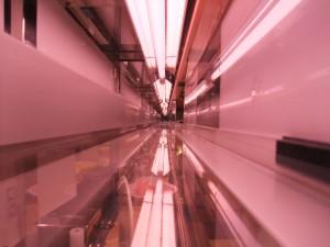 搬送レーン。左側の壁の銀色の部分がレールで、搬送機器はこのレールをタイヤで挟んで走ってきます。