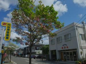 福島市森合のメインストリート中央にお店を構えるミートショップほずみ。