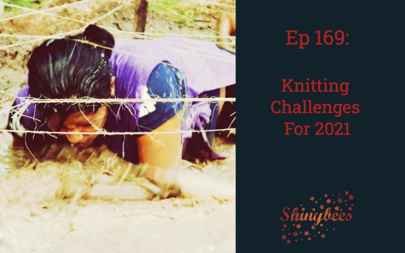 Ep 169 Shinybees Knitting Podcast Knitting Goals For 2021