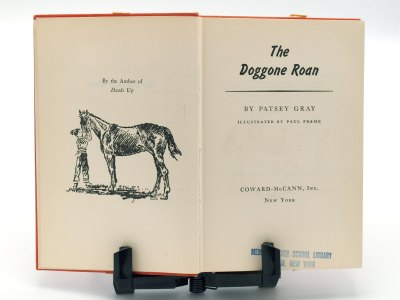 Doggone Roan - Patsey Gray - title page