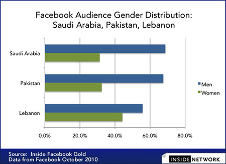 1211Facebook-Audience-Gender-Distribution-Saudi-Arabia-Pakistan-Lebanon-500-px.jpg