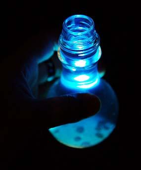magic-potion.jpeg