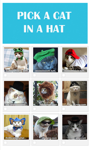 pick a cat in a hat.jpg