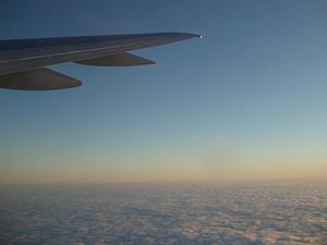 plane-wing.jpg