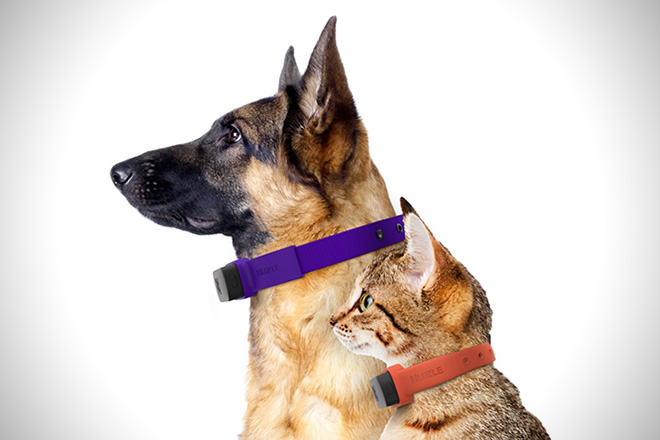 Nuzzle-GPS-Pet-Collar-3.jpg