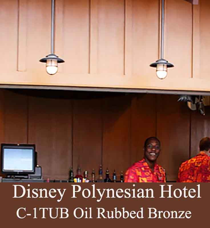 Solid Brass Outdoor Bar Lighting at Disney