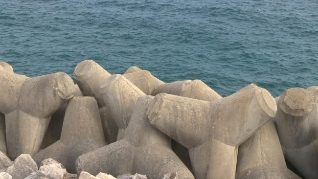 tetrapods - shipping and freight resource