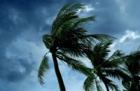 storm eloise transnet