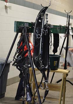 showtime equipment shipshewana harness