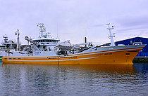 HG 333 Isafold