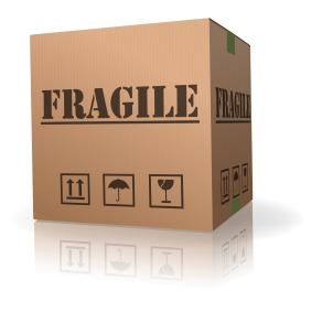 fragile sidebar 2-resized-292.jpg
