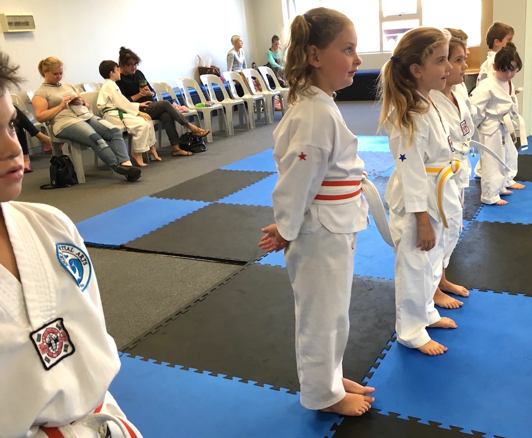 Shire Martial Arts Karate for kids