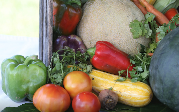 A cornucopia of fall produce from the Farm at Willow Run.