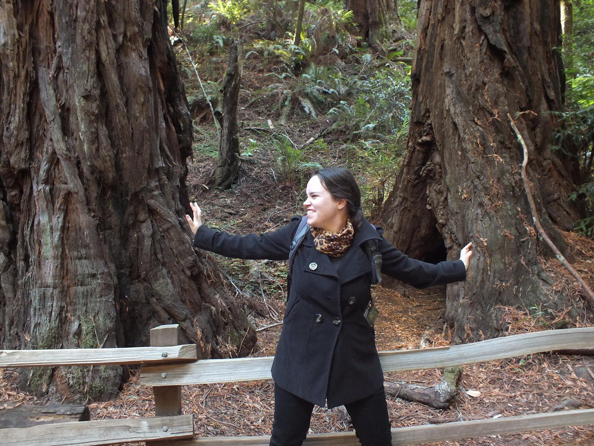 טיולים באזור סן פרנסיסקו - החיים לפי שירלי - בלוג לייף סטייל והשראה