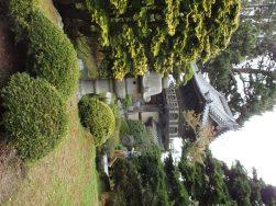 גן התה היפני בפארק גולדן גייט