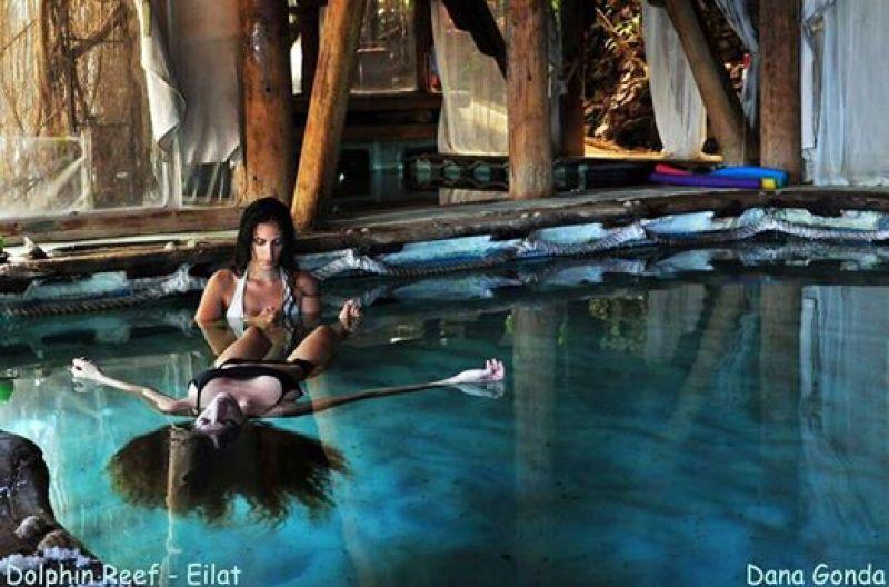 סתלבט על המים - החיים לפי שירלי - ריף הדולפינים - מה יש לעשות באילת