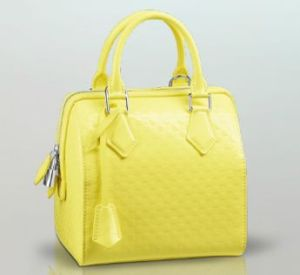 Louis Vuitton Spring Summer 2013 Speedy Cube PM