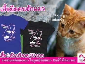เสื้อยืดลายแมว คนฮักแมว CAT-13