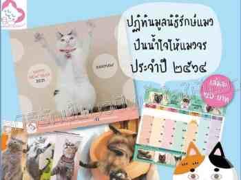ปฎิทินรักษ์แมว 2021