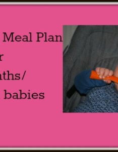 also month baby food chart indian meal plan for year old rh shishuworld