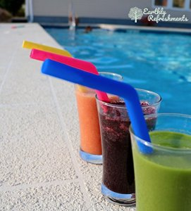 Earthly Refreshments Durable Silicone Straws