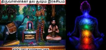 திருச்சி திருவானைக்கா தல வரலாறு பற்றியூம் ஞான விளக்கமும்