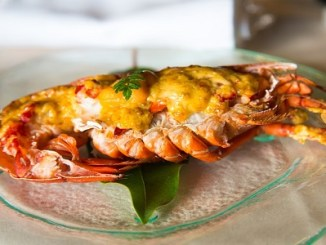 Lobster, Thermidor, Seafood, Shivesh, Kitchen, Cooking, Reciepe