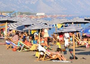 Plazhi i Velipojës