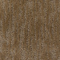 Carpet, Stainmaster, Studio - FloorsFirst Canada