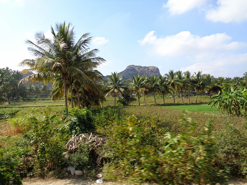 02 1 - Travelogue - A day in Ambur