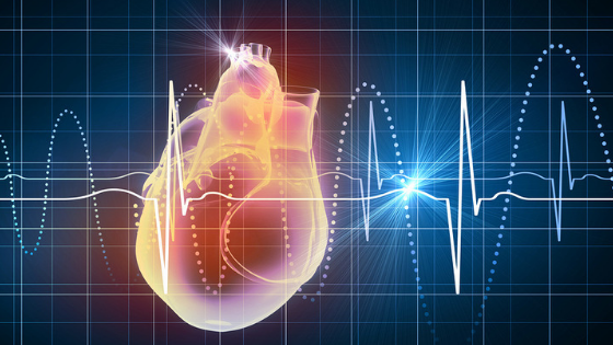 heart rate monitoring - What is your fat burning zone?