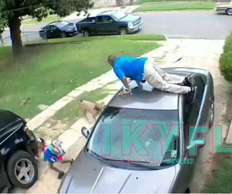 【衝撃】ピットブルが父親と娘に襲いかかり、父親は娘を置いて自分だけ車の上に逃げる