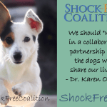 Shared Facebook Post – The Pet Professional Guild Launches The Shock Free Coalition