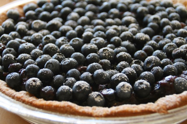 Dorothys Fresh Blueberry Pie Recipe Shockingly Delicious