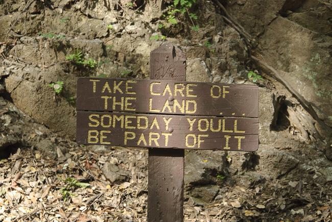 Trail Wisdom