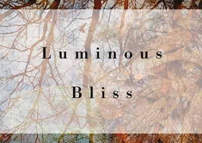 Luminous Bliss by Traleg Kyabgon